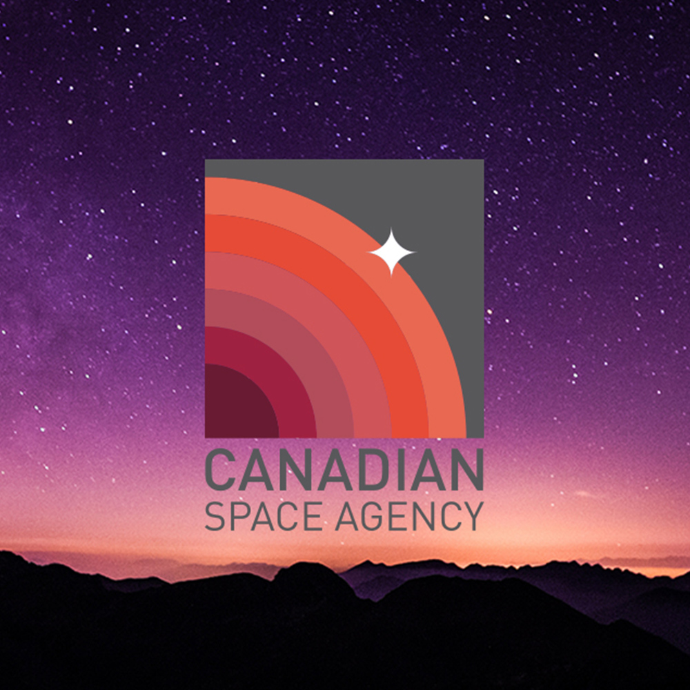 Canadian Space Agency Identity [Student Work]